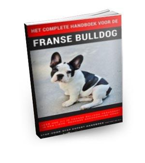 Franse Bulldog handboek