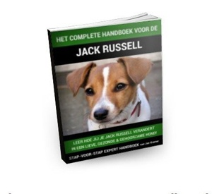Handboek Jack Russell